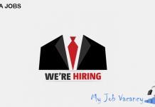 india job opportunities