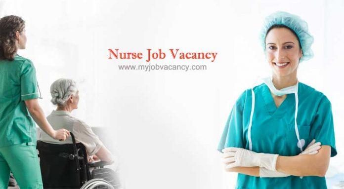 Nursing job vacancy India