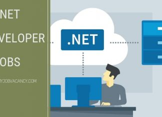 .Net Developer job vacancies
