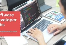 Software Developer job vacancies