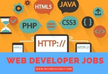 Web Developer Job Vacancies