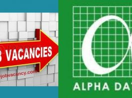 Alpha Data Job Vacancies