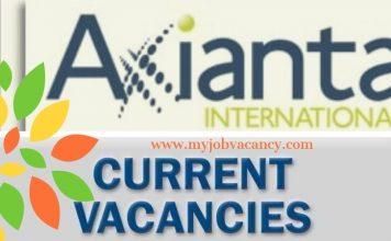 Axianta Latest Job Opportunities