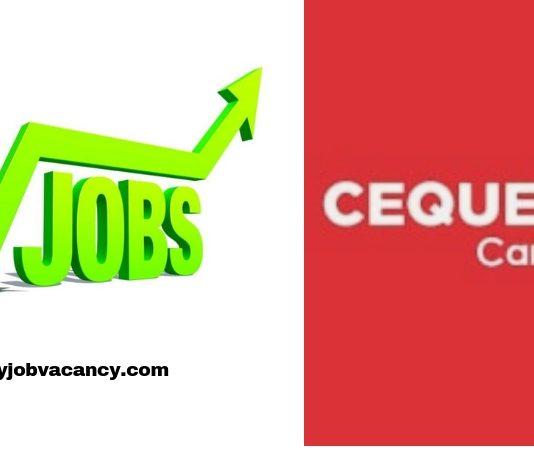 Cequens Job Vacancies