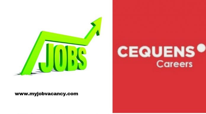 Cequens Job Vacancies