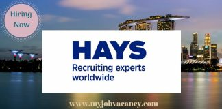 Hays Latest Job Vacancies