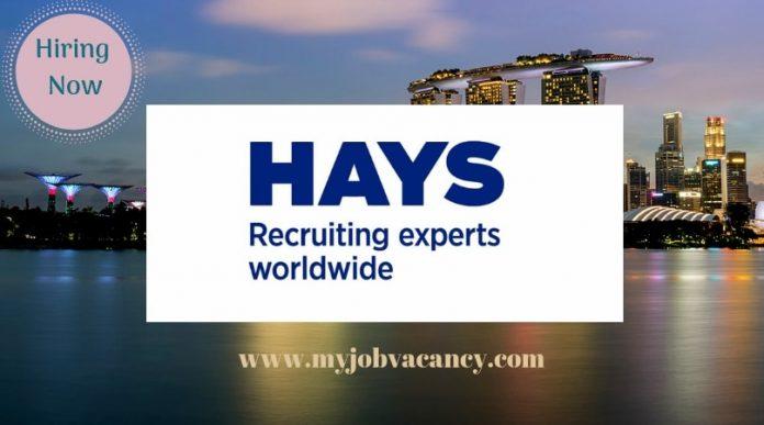 Hays Latest Job Vacancies