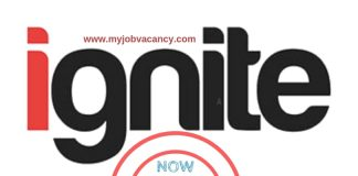 Ignite Selection Job Vacancies