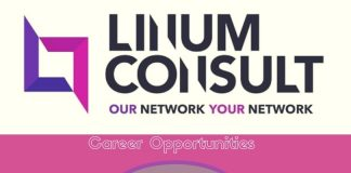 Linum Consult Job Vacancies