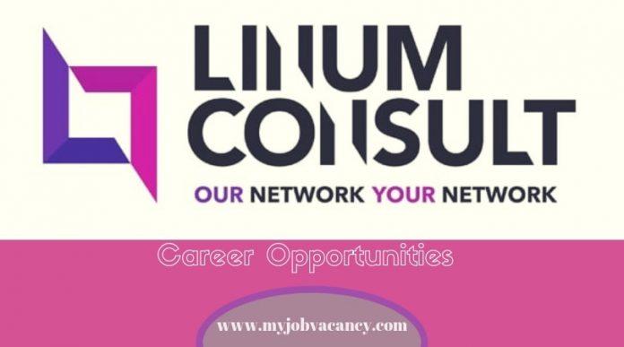 Linum Consult Job Vacancies
