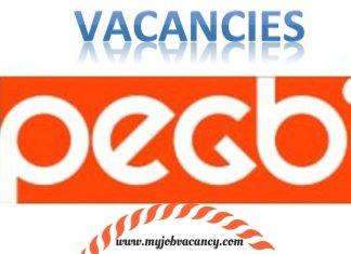 Peg B Technology Jobs