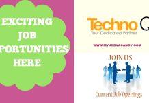 Techno Q Jobs
