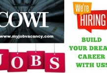 Latest COWI Job Opportunities
