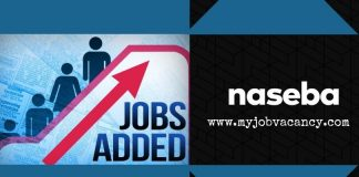 Naseba Latest Job Vacancies